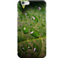 Drops of Rain iPhone Case/Skin