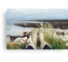 Wellies Canvas Print