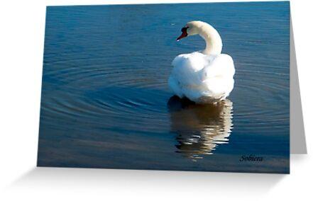 Bathing Beauty by Rosemary Sobiera