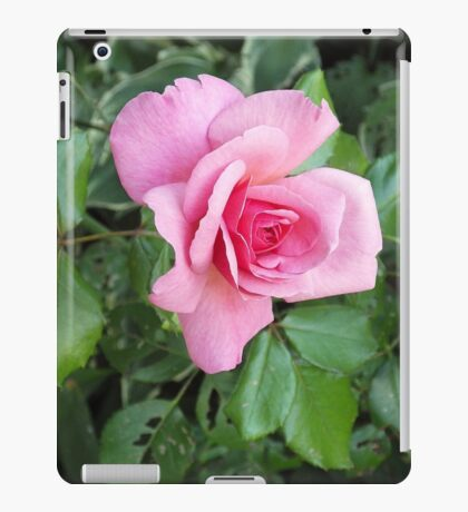 The Rose In My Yard iPad Case/Skin