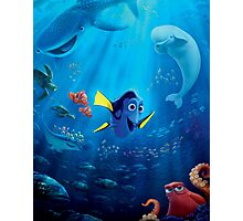 finding dory Photographic Print
