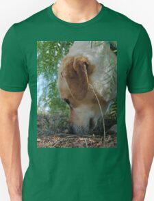 Bouncer the labrador T-Shirt