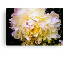 My Personal Liking Canvas Print