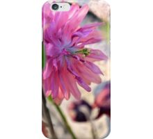 'Clementine Rose' Columbine on Last Day of Spring iPhone Case/Skin