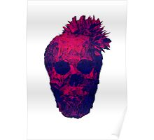 Beautiful Skulls Poster