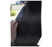 Horses-Second To Mans Best Friend Poster