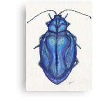 Blue Beetle Canvas Print