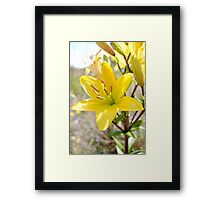Mother Nature Beauty-Flower Framed Print