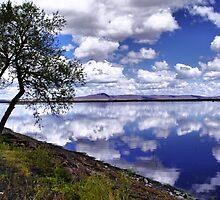 Klamath Basin National Wildlife Refuge  by Don Siebel