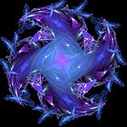 Lavender Blue by Dana Roper
