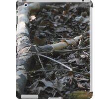 fallen branch iPad Case/Skin