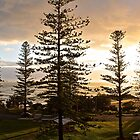 Port Macquarie sunrise  by Margaret Stanton