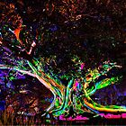 A Tree's Life - Vivid Sydney, Sydney Botanic Gardens.  by Bryan Freeman