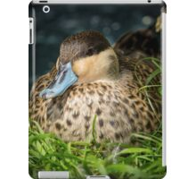 Blue Billed Duck iPad Case/Skin