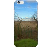 A VERY DRY LAKE BED iPhone Case/Skin