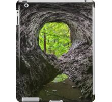 Cave in the Woods iPad Case/Skin