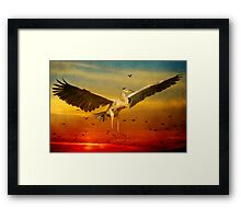 The arrival and the reuinion Framed Print