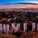 Hollywood by Radek Hofman