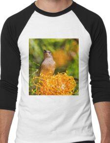 Brown Honeyeater Men's Baseball ¾ T-Shirt