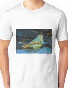 Juvenile Satin Bower Bird Unisex T-Shirt