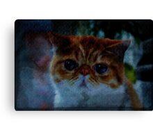 fancy derpcat Canvas Print