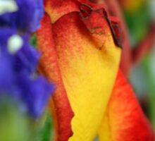 Close up on flower petals. Sticker