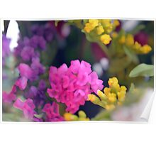 Watercolor style painted colorful flowers. Poster