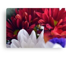 White and red flower petals, delicate natural background. Canvas Print