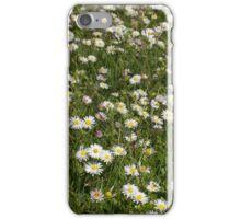 Daisy Dominance iPhone Case/Skin