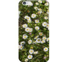 Diminutive Daisies iPhone Case/Skin