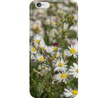 Splendor in the Grass iPhone Case/Skin