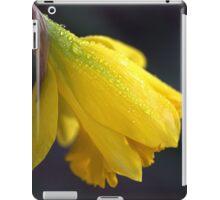 Daffodil Rain iPad Case/Skin