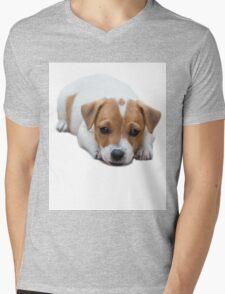 Jack Russel Mens V-Neck T-Shirt