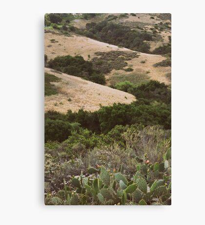 Warm Hills Canvas Print