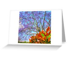The Colours of Spring .. HDR Greeting Card