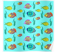 marine fish for a blue background Poster
