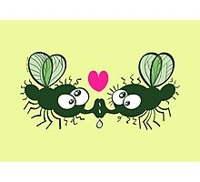 Ugly flies kissing and falling in love Photographic Print