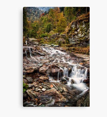 ~ the mountain stream ~ Canvas Print