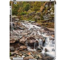 ~ the mountain stream ~ iPad Case/Skin