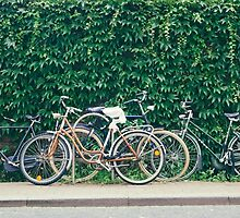 Bicycles by Jasper Smits