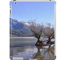 Willow Trees of Glenorchy, NZ iPad Case/Skin
