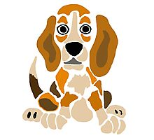 Cool Funny Funky Beagle Puppy Abstract Art Photographic Print