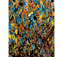 Abstract  design Photographic Print