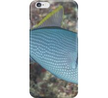 Gilded Triggerfish iPhone Case/Skin