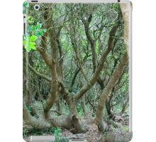 NC Trees iPad Case/Skin