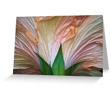 Flower Fountain Greeting Card