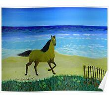 Feeling Free Horse Poster