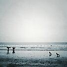Stone the Crows by kibishipaul