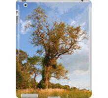 Kodama iPad Case/Skin