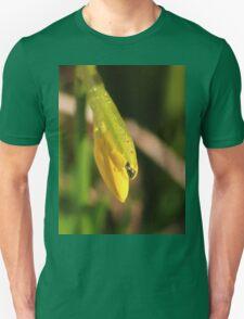Raindrops on miniature daffodil T-Shirt